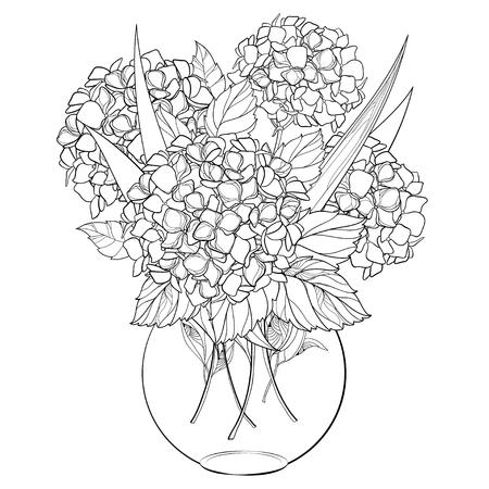 Bukiet kwiatów na białym tle. Hortensja do projektowania i kolorowania. Ilustracje wektorowe