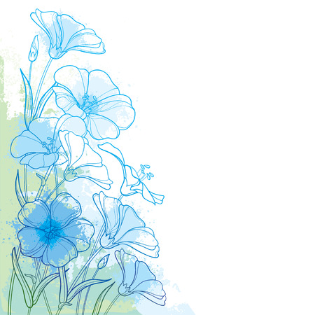 Flax plant or Linseed or Linum. Flower bunch on white background. Ornate contour Flax for summer design. Ilustracja