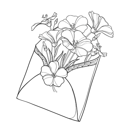 Bouquet with outline Flax plant or Linum in open craft envelope. Flower bunch on white background. Ornate contour Flax for summer design and coloring book.