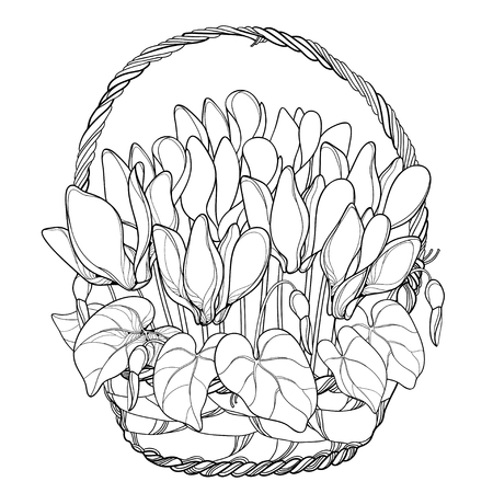 Bouquet with outline Contour Alpine flowers for spring design or coloring book. Ilustracja