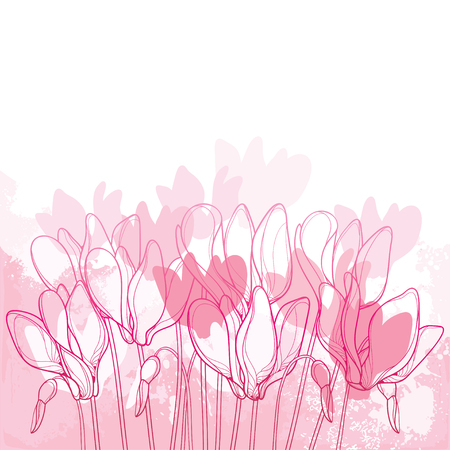 Bouquet with outline on white background. Perennial Alpine Mountain Flowers For Spring Design.