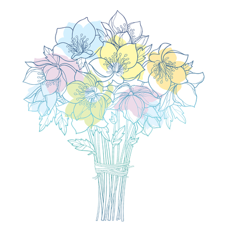 Bouquet with outline Helleborus isolated on white background. Ornate flower bunch in contour for spring design. Vector Illustration