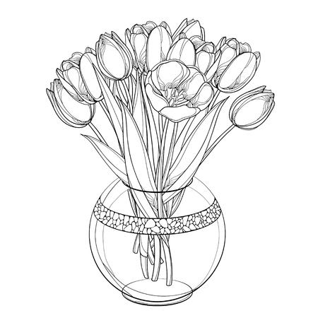 Bukiet dowcip tulipanów, pąków i liści na białym tle.