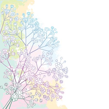 Corner bouquet with Gypsophila or Babys breath.
