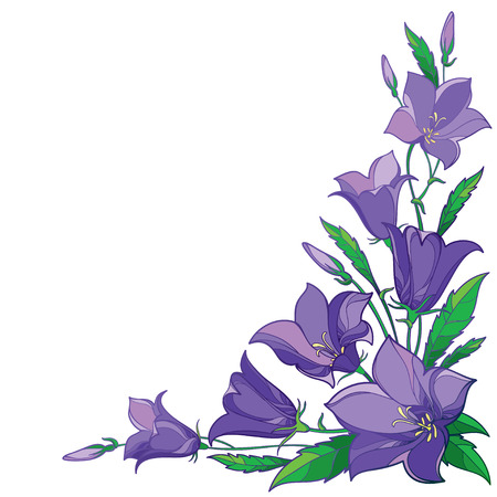 Ornate bluebell bunch in contour style for spring design.