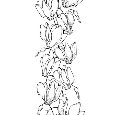 Seamless pattern with Cyclamen or Alpine violet.