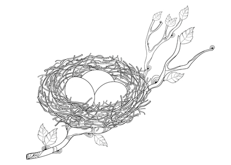 Drawing of outline nest with bird egg isolated.
