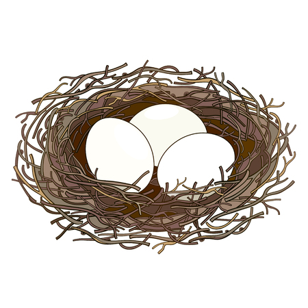 Drawing of nest with bird egg isolated.