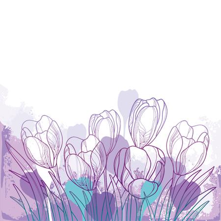Spring bouquet with violet crocus or saffron flower.