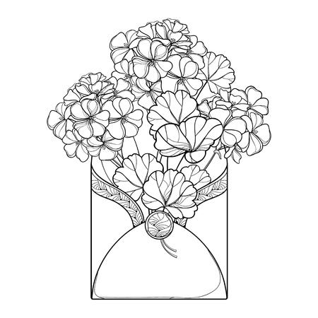 Bouquet with Geranium or Cranesbills in open envelope.