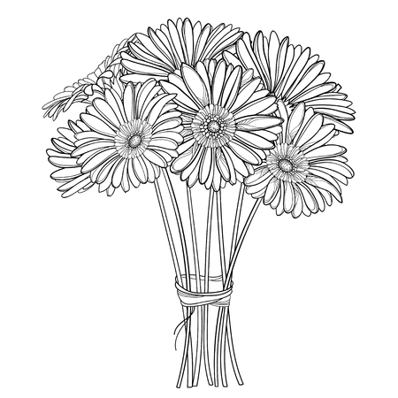 Bouquet of outline Gerbera flower in black isolated. Ilustrace