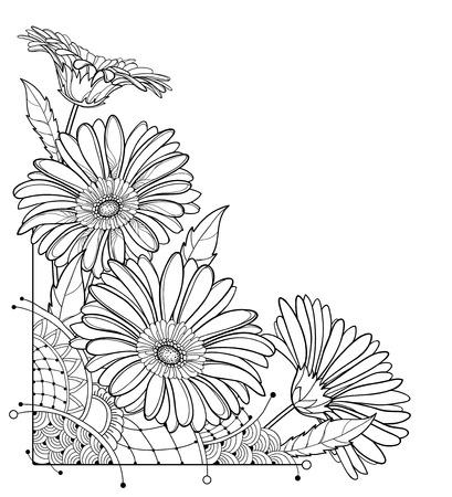 Corner bouquet of outline Gerbera flower isolated. Reklamní fotografie - 123282788