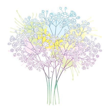 Blumenstrauß mit pastellfarbenem Schleierkraut oder Schleierkraut.