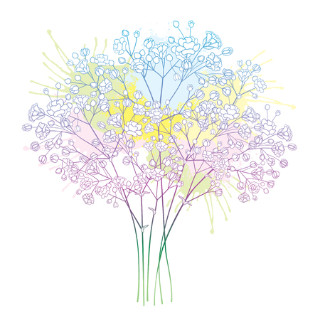 Bouquet au pastel Gypsophile ou Gypsophile.