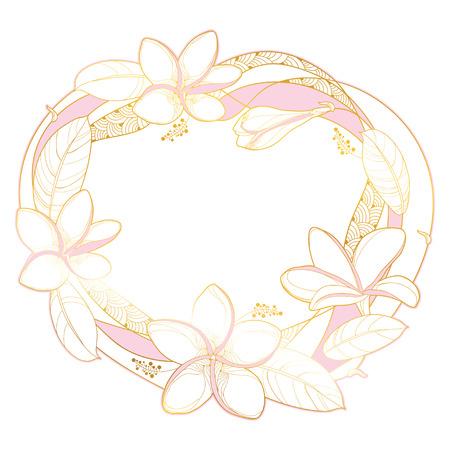 Wreath of outline Plumeria or Frangipani flower. Stock Vector - 123282810