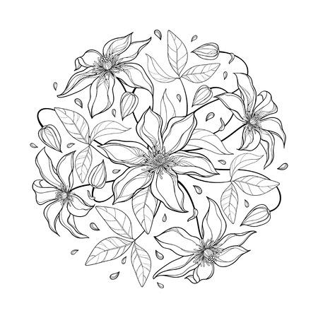Blumenstrauß mit Clematisblume und -blatt im Schwarzen lokalisiert.