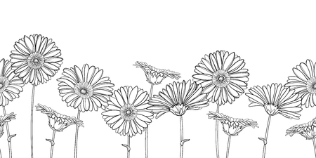 Seamless pattern with outline Gerbera flower in black.