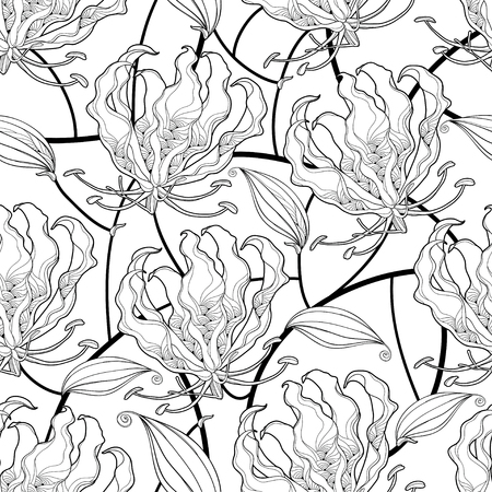 Seamless pattern of tropical Gloriosa or flame lily. Ilustração
