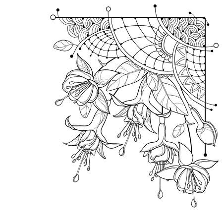 Ecke Blumenstrauß Fuchsia in schwarz isoliert. Vektorgrafik