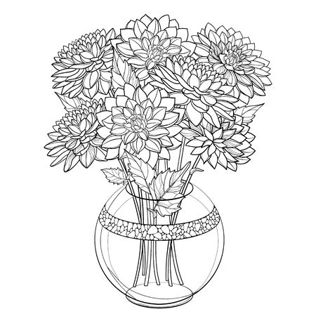 Bouquet with outline Dahlia flower and leaf isolated. Иллюстрация