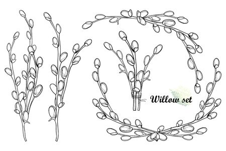 Set of outline Willow bouquet in black isolated.