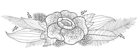 Bouquet of outline Rafflesia or corpse lily and palm leaf isolated.