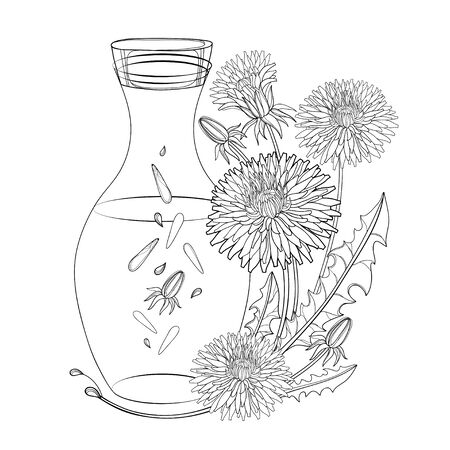 Corner bouquet of outline Dandelion essential oil isolated. 向量圖像