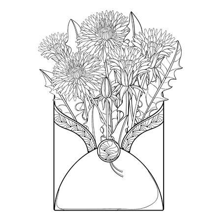 Bouquet of outline Dandelion flower in open envelope isolated. 向量圖像