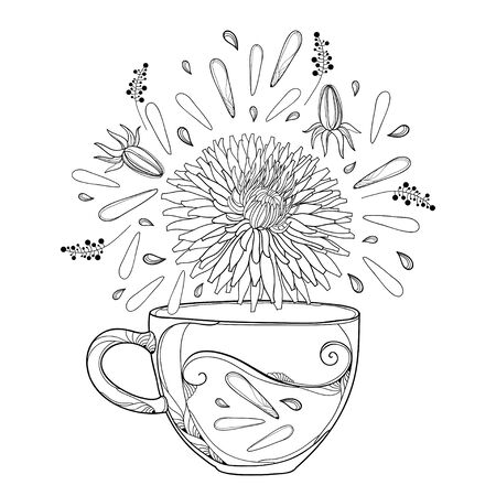 Outline cup of Dandelion herbal tea with flower and bud isolated.