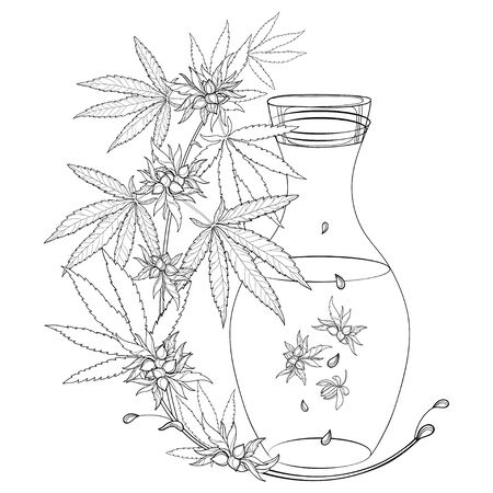 Outline Cannabis or Marijuana oil in bottle in black isolated. 向量圖像