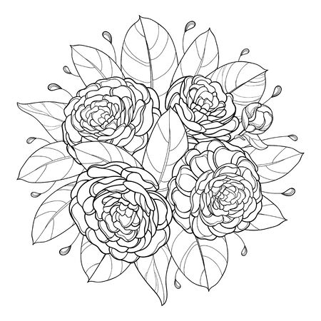Round bouquet with outline Camellia flower and leaf isolated.