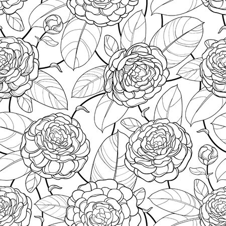 Seamless pattern with outline Camellia flower and ornate leaf.