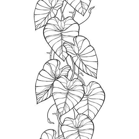 Seamless pattern with outline tropical Colocasia or Taro leaf.