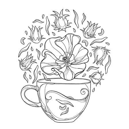 Herbal tea with tropical Carcade or Hibiscus sabdariffa isolated.