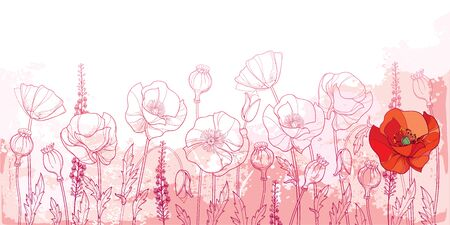 Field with outline Poppy flower, seed and leaves in pastel pink.