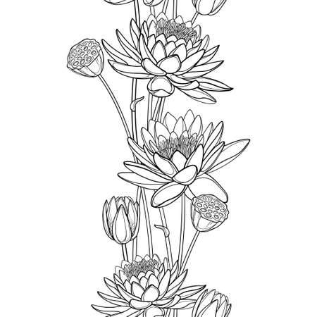 Vertical seamless pattern with outline Lotus or water lily, bud and seed pod in black.