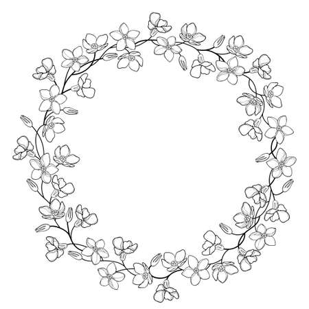 Round wreath with outline Forget me not bunch, stem and bud in black isolated on white background. 矢量图像
