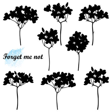 Set with Forget me not bunch silhouettes, bud and stem in black isolated on white background.