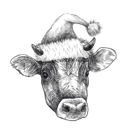 Hand-drawn sketch of Bull head in Santa hat isolated on white background. 矢量图像