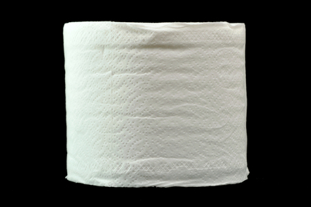 The one roll of tissue. photo