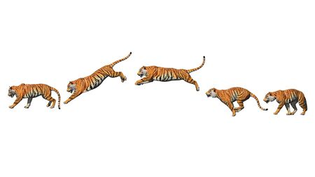 Bengal tiger pose jump animation with pose to pose by 3d rendering include work path for alpha. Archivio Fotografico