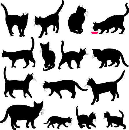 kittens: cats collection - vector Illustration