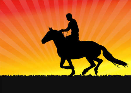 riding: horseman on the sunset background - vector