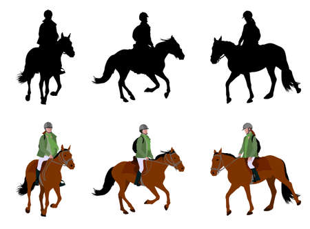 horseback riding: riding a horse - silhouettes and illustration - vector