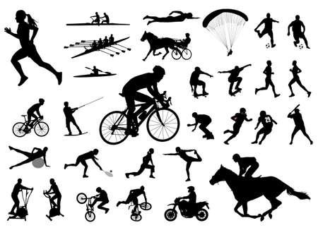 femme a cheval: 30 hautes silhouettes sportives de qualit� - vecteur