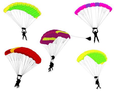 skydive: skydivers illustration - vector Illustration