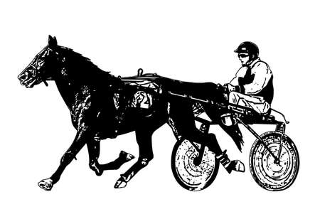 harness racing illustration - vector
