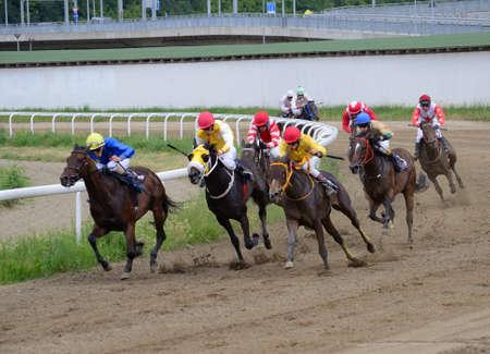jockey's: BELGRADE,SERBIA - JUN 19: Unidentified horses and jockeys galloping in race at the Belgrade Hippodrome on Jun 19, 2016 in Belgrade, Serbia