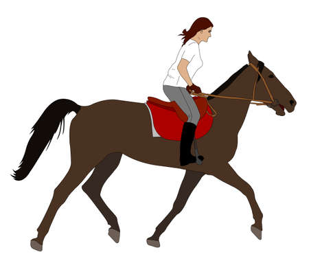 adolescent sexy: woman riding horse illustration - vector