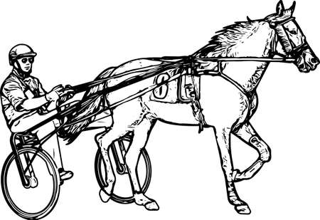 Trotter in harness drawing - vector Stock Vector - 134410843